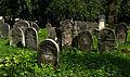 Jewish cemetery Szydlowiec IMGP7630.jpg
