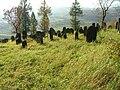Jewish cemetery in Bobowa23.jpg