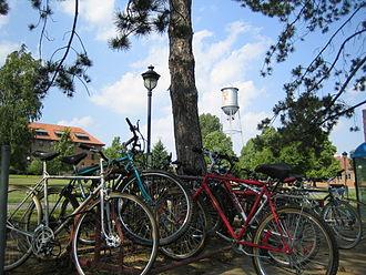 John Abbott College - Bike rack, summer 2007.