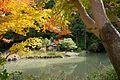 Joruriji Kizugawa Kyoto pref Japan10n.jpg