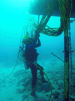Aquanaut - Aquanaut Josef Schmid working outside the Aquarius underwater laboratory in 2007.
