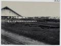 KITLV - 16643 - Kleingrothe, C.J. - Medan - Storage of sulfuric acid and drill pipes of the Batavian Petroleum Company at Pangkalan Brandan - 1916.tif