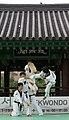 KOCIS Korea Taekwondo Namsan 08 (7628127278).jpg