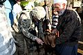 KYADT vet makes village call in Parwan 111203-A-Tv238-042.jpg