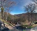 KaaterskillClove NY panorama.jpg