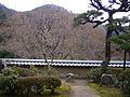 Kaijusenji09s2000.jpg