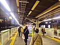 Komagome stn platforms - night - Dec 22 2017.jpg