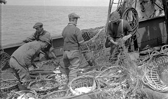 ST Koraaga (1914) - Repairing Nets on the Koraaga while operated by the State Trawling Industry