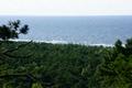 Krynica Morska, Wielbłądzi Garb, widok na morze.png