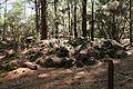 La Palma - El Paso - LP-301 - Poblado de Cabañas del Barranco de Las Ovejas 13 ies.jpg