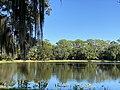 Lake Seminole Park Scenery.jpg