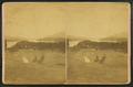Lake Sunapee, from Lake View House, from Robert N. Dennis collection of stereoscopic views.png