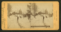Lake View cemetery Cleveland, O, by Alfred S. Campbell.png