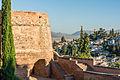 Landscape detail Alhambra Granada Spain.jpg
