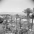 Landschap in de omgeving van Jericho. De vlakte van de Dode Zee, Bestanddeelnr 255-5615.jpg