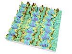 Laser structured surface (24019830053).jpg