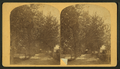 Lawyer Stanley's residence, from Robert N. Dennis collection of stereoscopic views.png