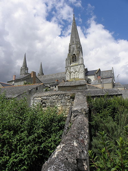 Vue méridionale de la collégiale du Puy-Notre-Dame (49).