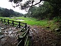 Lengzhuikeng Wetland 冷水坑濕地 - panoramio.jpg