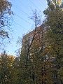 Leninsky 41-66 - IMG 3215 (45658284932).jpg