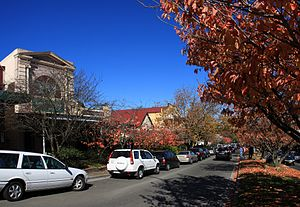 Leura, New South Wales - Leura's main street, Leura Mall, looking south-east