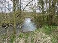 Licques la Hem (rivière) (2).JPG
