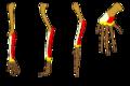 Limb homology.png