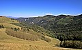 Lincoln National Forest 1.jpg