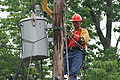 Lineman changing transformer.jpg