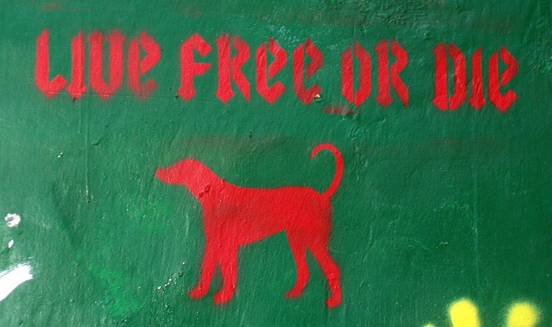 File:Live Free or Die, graffitti from Edinburgh, Scotland.JPG
