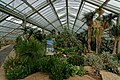 London - Kew Gardens - Princess of Wales Conservatory 1987- Ten Climatic Zones II.jpg