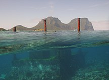 Lord Howe Island-1890–1999-LordHoweIsland NorthBay Reef 35