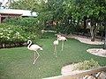 Los Melones, Dominican Republic - panoramio.jpg