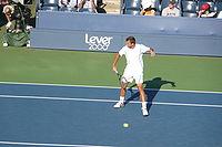 Lovro Zovko 2008 US Open.jpg