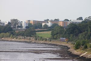 Avocet Line - Alongside the River Exe near Lympstone
