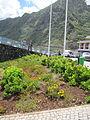 Madeira em Abril de 2011 IMG 1547 (5661890100).jpg