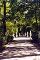 Magic Sankt Petersburg - Sommer-Garten Impressionen 2.jpg
