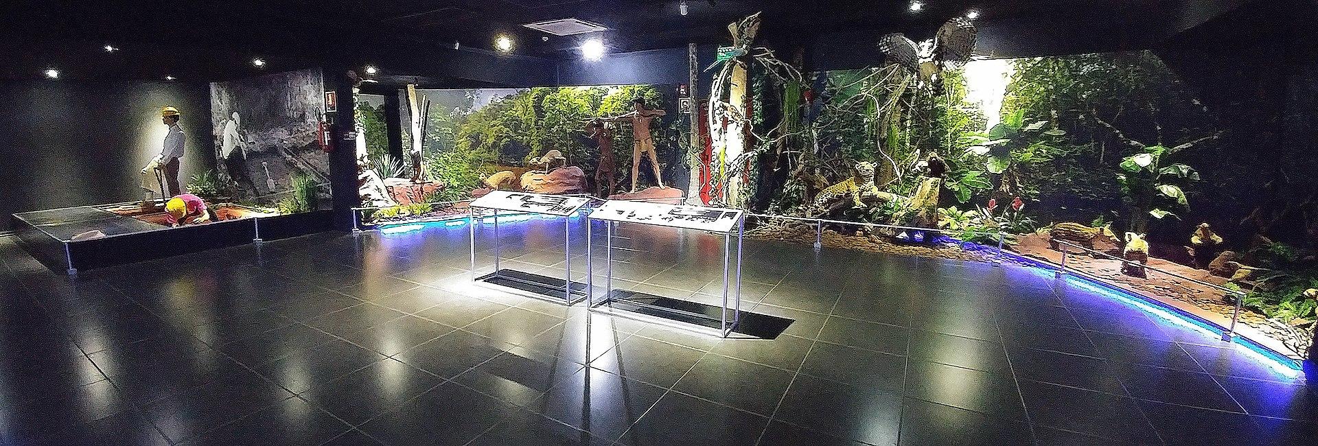 Main exhibition in Museo de la Tierra Guarani.jpg