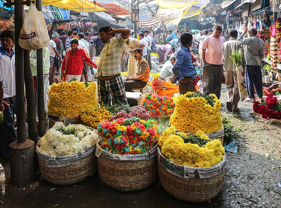 Mallick Ghat Flower Market, Kolkata 03