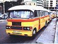 Maltabus.jpg