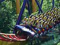 Mantis (Train Close 2).jpg
