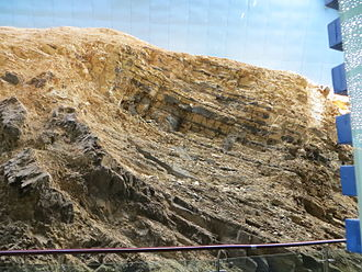 Maotianshan Shales - Outcrop of the Maotianshan Shale, site of the discovery of the Chengjiang Biota