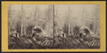 Maple sugar making in the Northern Woods of New York, by E. & H.T. Anthony (Firm) 2.png