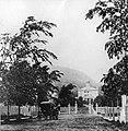 McGill College Avenue 1869.jpg