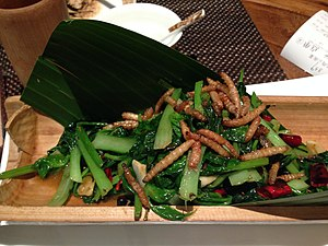 Mealworm - A Chinese dish of mealworms from a Yunnan restaurant