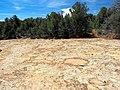 Mesa Verde National Park-19.jpg