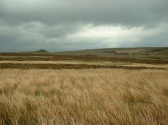 Migneint - Part of the Migneint's great expanse of moorland.