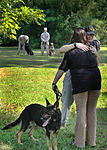 Military working dog bids Marine Corps farewell 120817-M-EG384-020.jpg