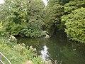 Millhead Stream2.JPG
