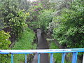 Mleczna (doplyw Gostyni), Katowice Piotrowice, widok z mostu na ul. Kornasa.jpg